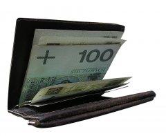 Portfel, pieniądze