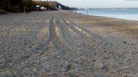 bałtyk plaża