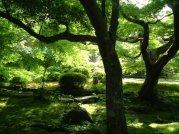 japonia wycieczki