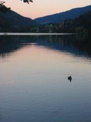 domki nad jeziorem: nad jeziorem